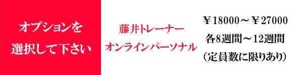 藤井トレーナーLPカートリンク